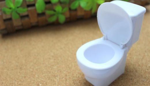 【トイレの壁紙】絶対おすすめのクロスを紹介!水回りはこれで決まり