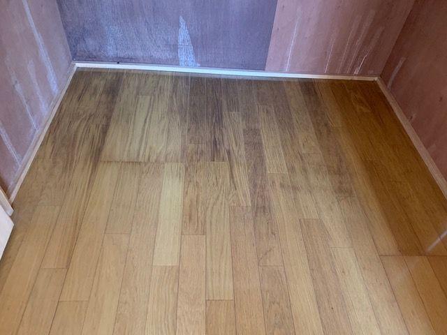 カビの生えた押入れの床