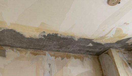 【おすすめ接着剤】コンクリートの壁紙が剥がれた時の対処法方