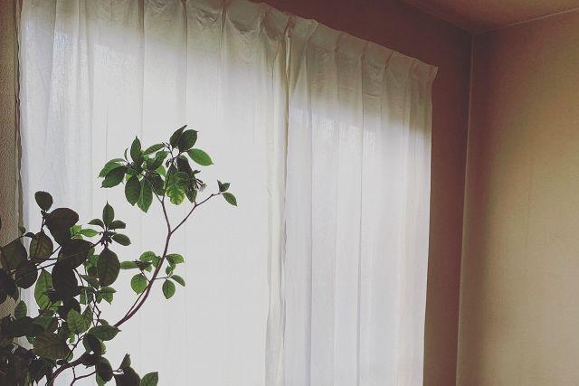 ナチュラルな部屋のカーテン選び